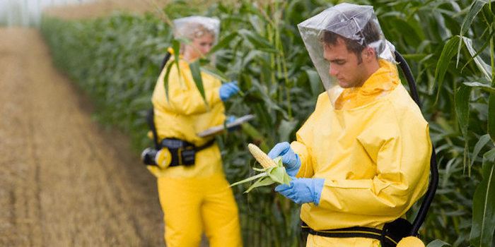 93% Of Americans Test Positive For Monsanto's Glyphosate Poison