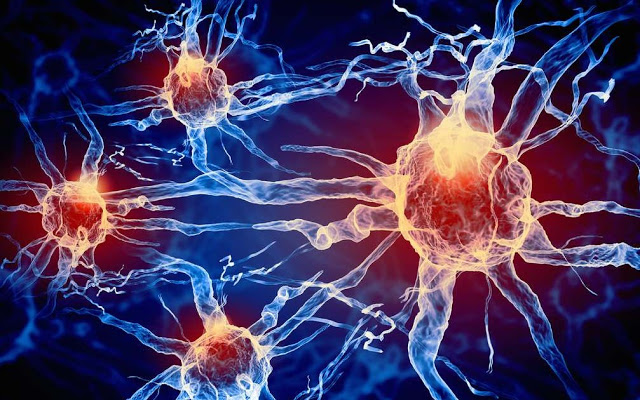 Nerves-Neurons-Human Cells-Electricity