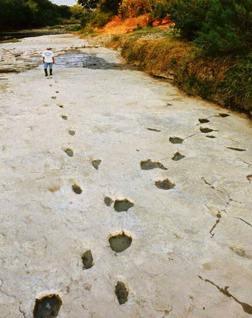 dinosaur-human-footprints