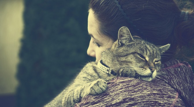 THE SCIENCE BEHIND THE PURR: HOW A CAT'S PURR CAN HEAL HUMANS