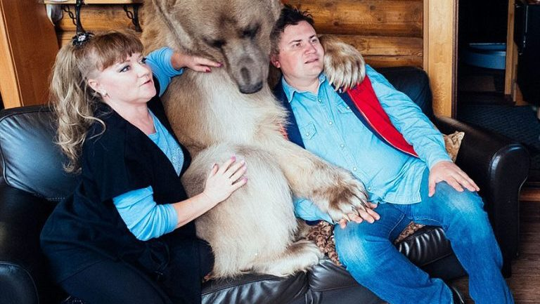 Russian Couple Adopts Orphaned Bear. 23 Years Later, They Still Live Together