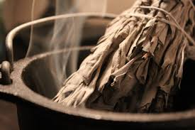 SCIENCE OF SMUDGING: HOW SAGE ACTUALLY CLEANS BACTERIA IN THE AIR