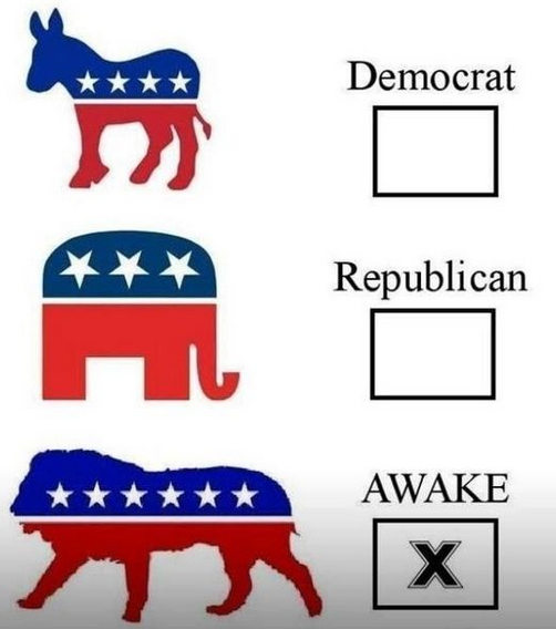 republican-democrat-awake-google-search
