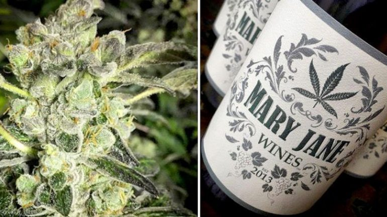 Introducing Weed Wine You Can Now Get High And Drunk At The Same Time