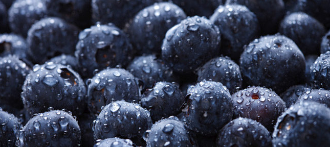 Anti Inflammatory Properties of Blueberries Can Control Blood Pressure