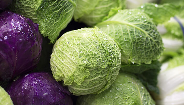 Cabbage Vs. Chemo For Cancer?