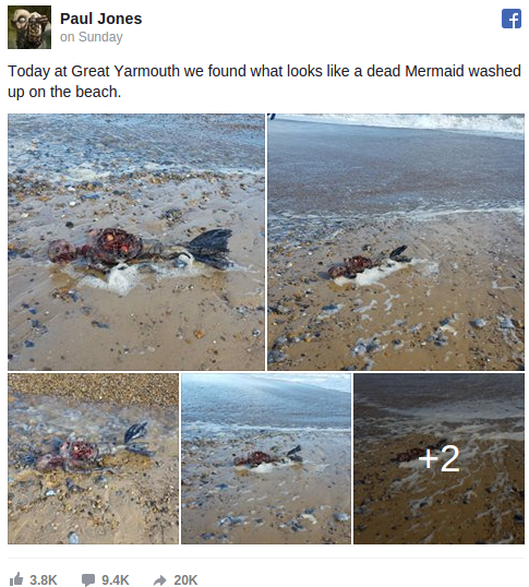 video-of-dead-mermaid-on-uk-beach-goes-viral-your-news-wire