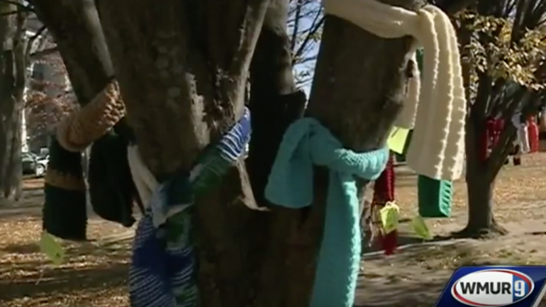 If You Notice a Scarf Tied To a Tree or a Pole This Winter, Here's What It Means