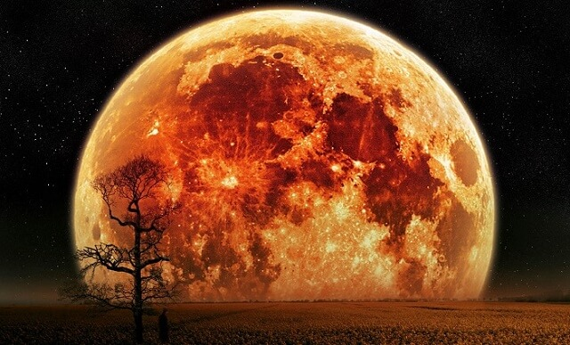 the-biggest-record-breaking-supermoon-in-nearly-70-years-dont-miss-this
