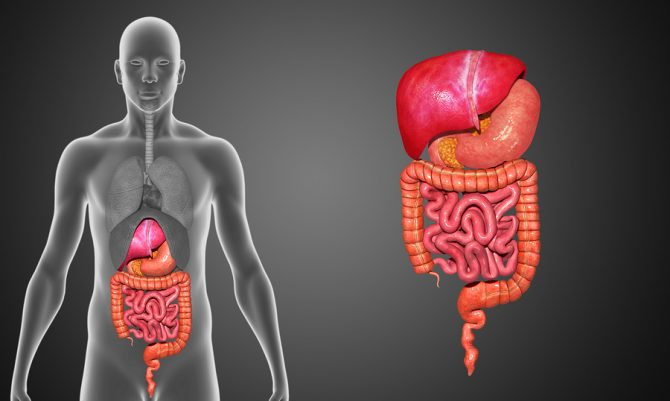 The 3 Juice Colon Cleanse That Can Clean All The Crap Out of Your System Like Nothing Else