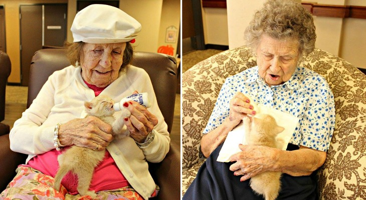 This Is What Happens When An Animal Shelter Partners With An Elderly Care Facility