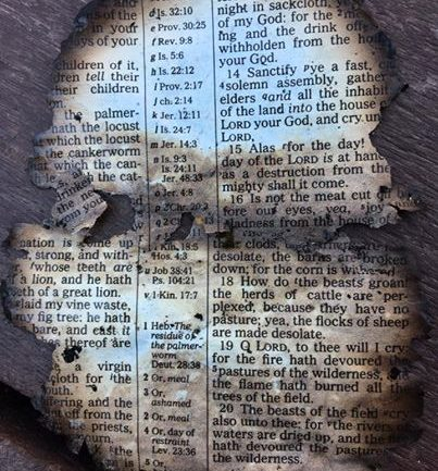 Dollywood Worker Finds Charred Page of Bible Under Bench. What It Says is Downright Eerie
