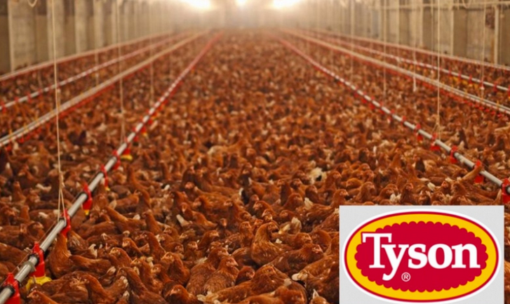 Tyson Foods Now Listed as Bigger Polluter Than US Department of Defense, Koch Industries and Exxon Mobile