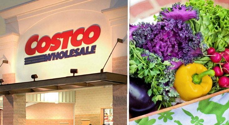 Costco Is Buying Over A Thousand Acres Of Land For Local Farmers To Grow Organic Produce