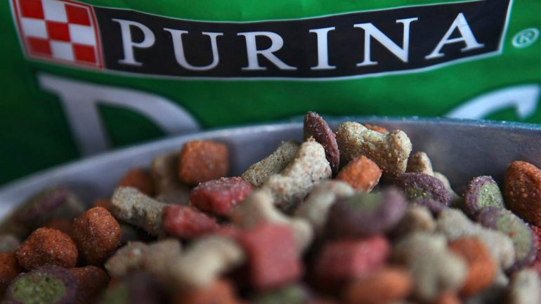 Popular Dog Food Brand Has Poisoned & Killed Thousands of Dogs