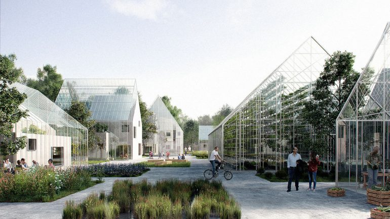 This Area in Detroit is Now America's First 100% Organic, Self Sustainable Neighborhood