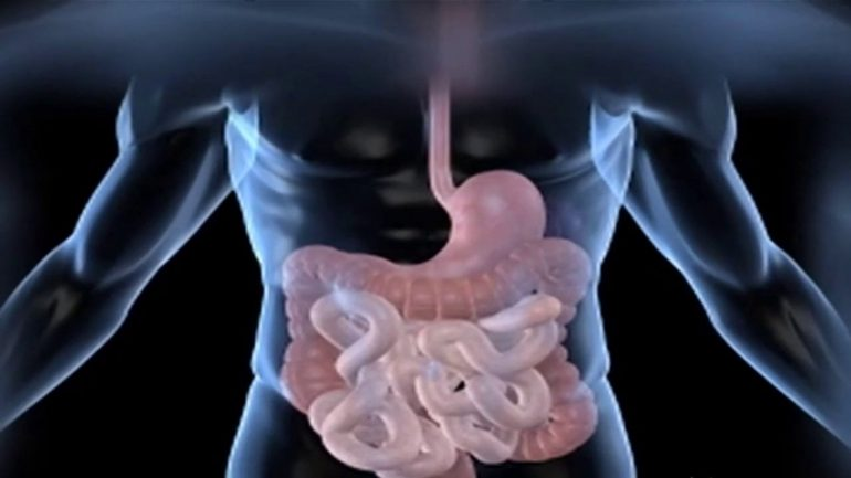 Stunning Scientific Discovery Finds That Gut Bacteria Control Your Brain Chemistry, Altering Moods and More