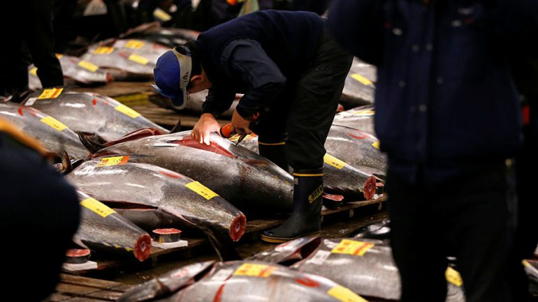Detection of Cancer Causing Chemical at Tokyo Site Delays Relocation of World's Largest Fish Market