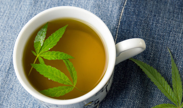 7 Reasons To Start Drinking Cannabis Tea