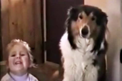 Mom Tells Them To Smile and Say Cheese. Now Watch The Dog Make The Most Hysterical Face