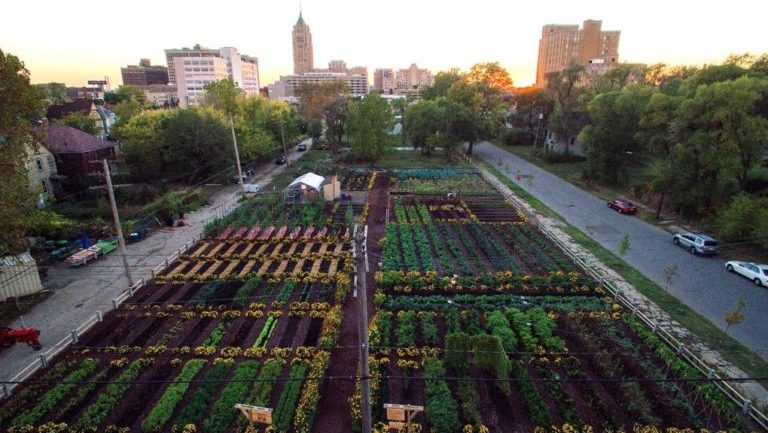First Urban Agrihood In America Feeds 2000 Households For Free