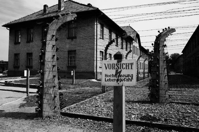 BAYER Bought Concentration Camp Victims in WWII