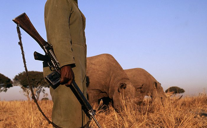 This National Park Opted To Shoot Poachers On Site, Has Killed 50 So Far