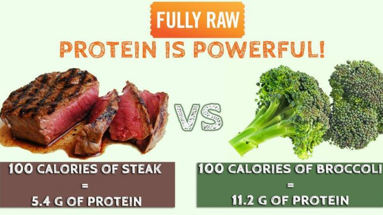 Plant Based Protein vs. Protein From Meat: Which One Is Better For Your Body?