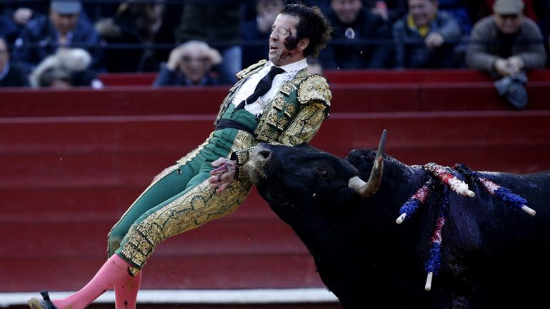 One Eyed Matador Gored in Grizzly Bullfight