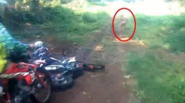 Human Or Not? Mysterious Creature Sparks Internet Frenzy In Indonesia