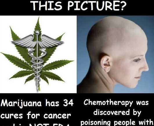 Any Attack on Medical Marijuana and CBD is An Attack on Humanity