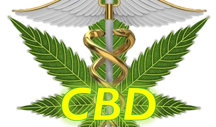 Chemistry Behind Cannabinoids Explains How CBD's are Saving Lives
