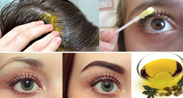 With This Oil Your Hair, Eyelashes and Eyebrows Grows Rapidly