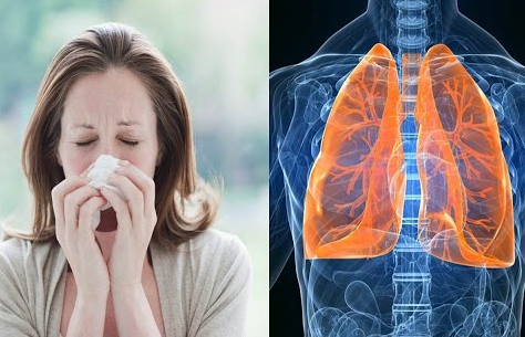 How To Get Rid of Phlegm and Mucus in Chest & Throat