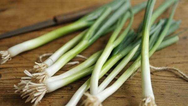 Do Not Throw Away The Green Picks Of Spring Onions! These Parts Have Amazing Positive Effects On The Health