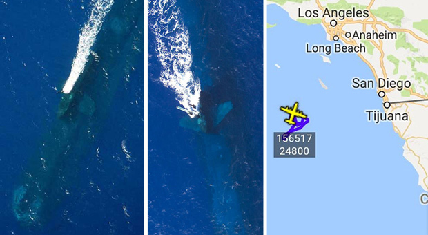 Fears Foreign Nuclear Submarine Has Been Spotted Off California Coast