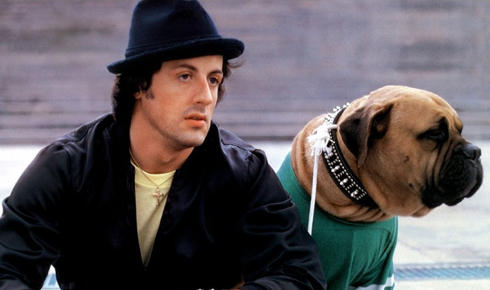 Sylvester Stallone Just Shared A Tribute To His Old Dog, And It's Absolutely Beautiful