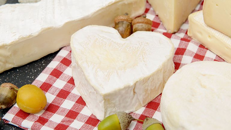 9 Healthy Cheeses To Add To Your Diet