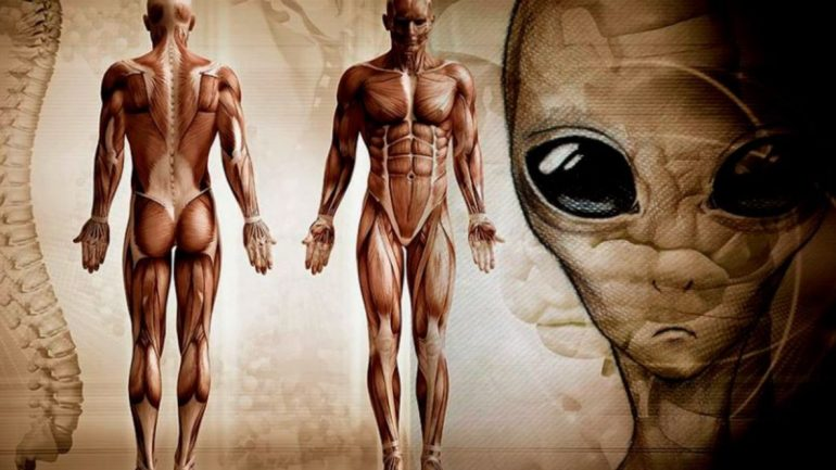 Scientists Make A Shocking Claim: Humans Did NOT Evolve On Earth