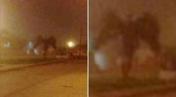 Viral Footage Of Giant Demon 'Analysed' And Proven NOT FAKE