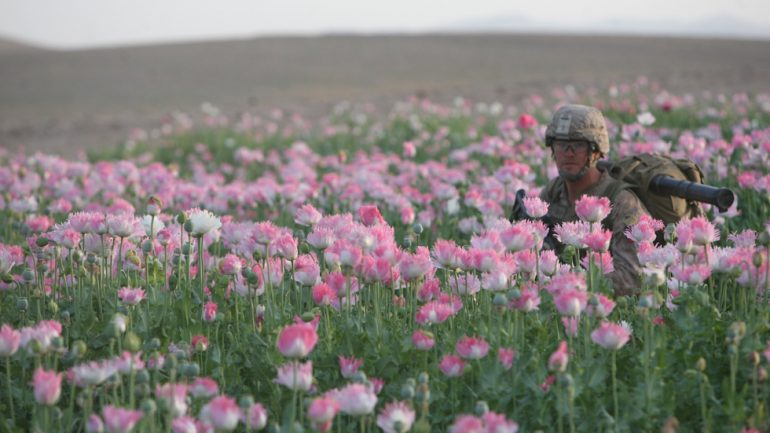 North Korea Is A Major Opium Producer, Making It A Prime Target For The CIA