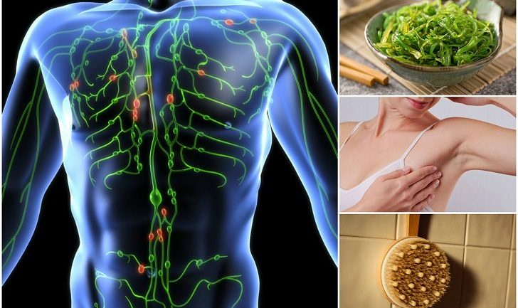 Danger Signs That Your Lymphatic System Is Sluggish and How To Do A Lymph Detox
