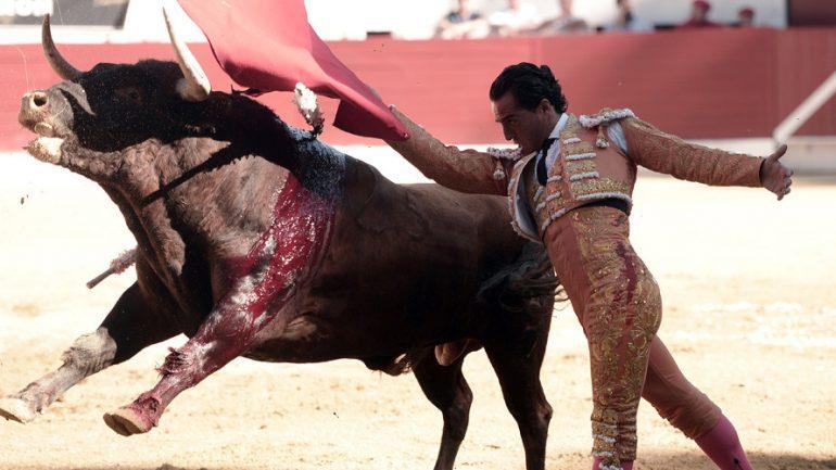 Award Winning Matador Dies After Being Gored By Bull