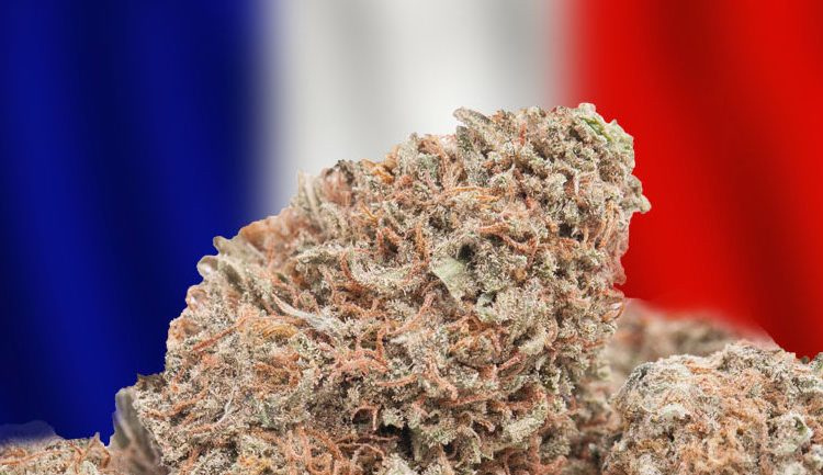 France To Effectively Decriminalize Cannabis By Ending Prison Terms