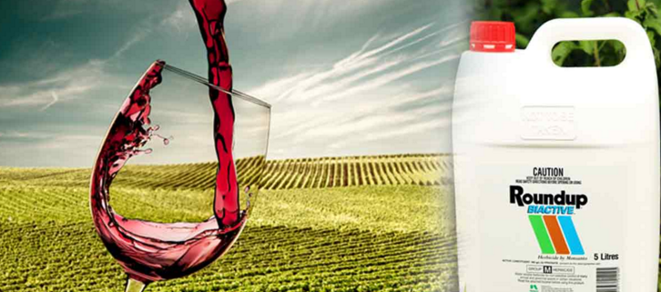 Not Even Your Organic Wine Is Safe From Monsanto