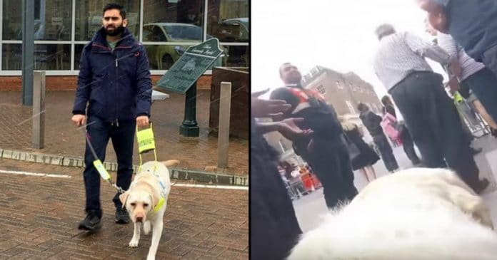 Blind Man Straps Camera To Guide Dog's Back…..When Wife Sees Video She's Horrified