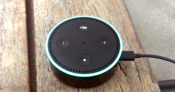 I Asked My Amazon Echo A Question About Our Government, And The Answer Terrified Me