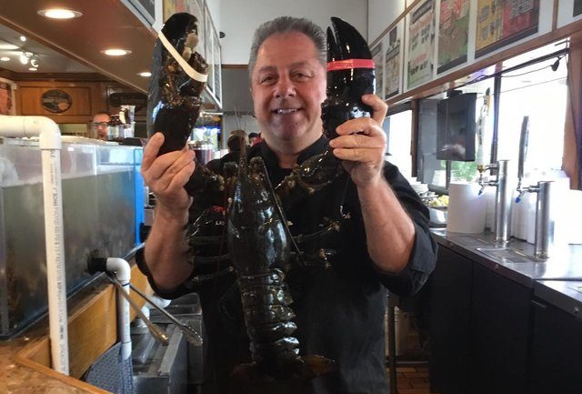 132 Year Old Lobster Set Free After Spending 2 Decades In A Restaurant Tank