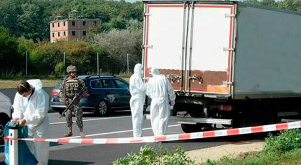 30 Children Rescued From An Elite Pedophile Ring Found In a Truck
