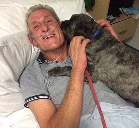 Miracle Dog Honored For Bringing 62 Year Old Owner Out of Coma When Doctors Had Lost Hope
